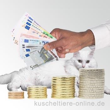Kosten für Katzen